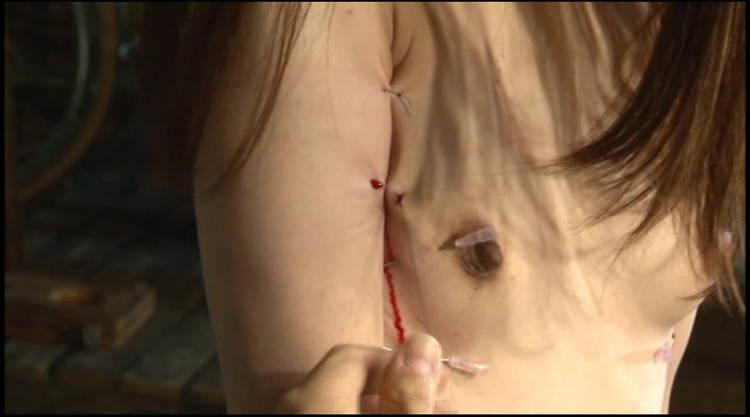 乳首針貫通や縫合SM…9